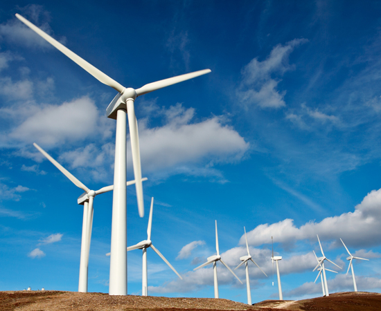 Field of wind turbines against blue sky background